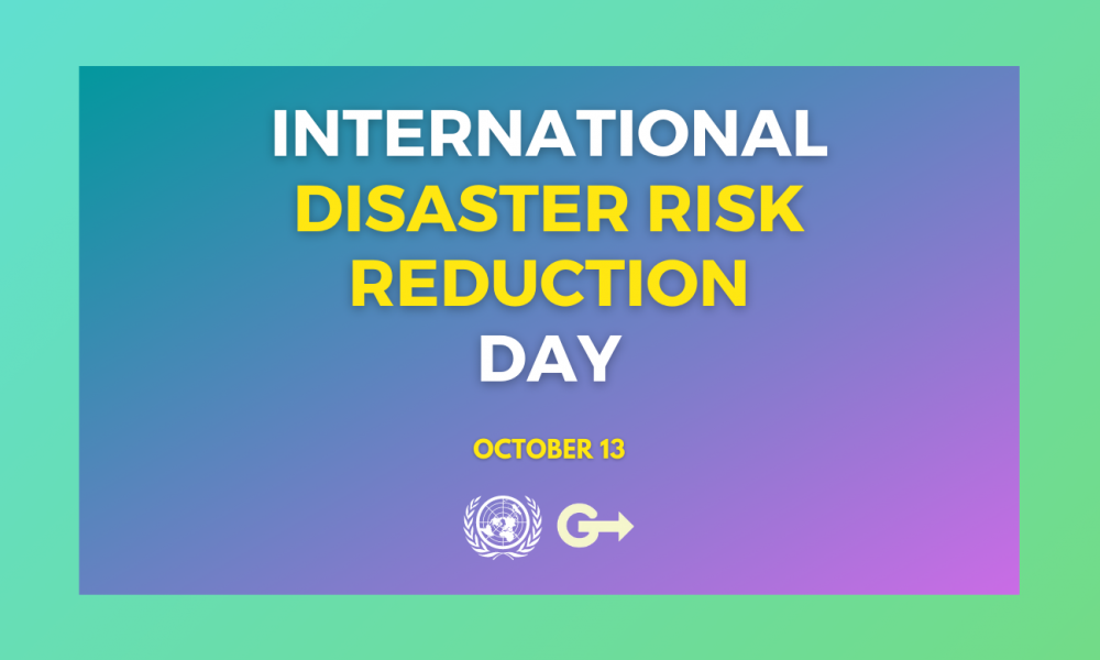 International risk reduction day