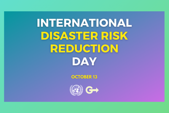 International risk reduction day